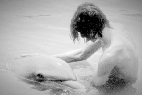 ... on a 9 month sexual relationship with Ruby, a captive female dolphin