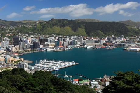 Wellington-2-1200.jpg?width=460