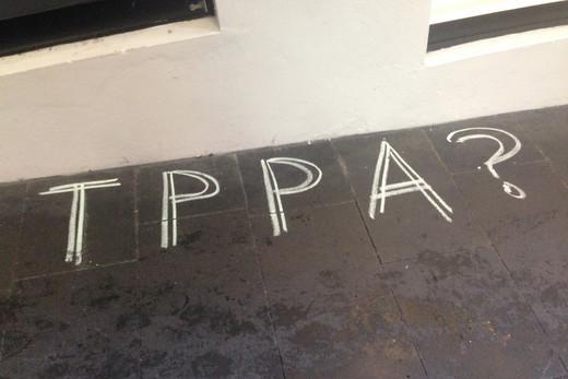 Scrutiny of TPPA